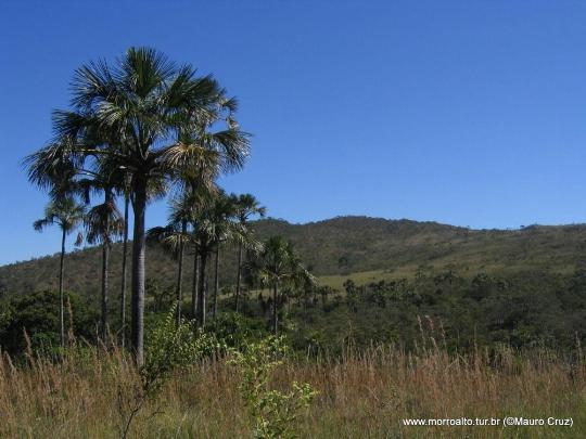 Reserva Ecológica Vargem Grande